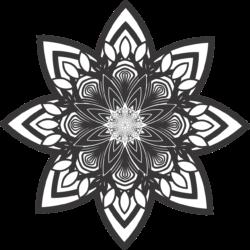 Dein BLOG in der spiritualen-welt.de
